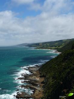 Photos d'Australie: Great Ocean Road