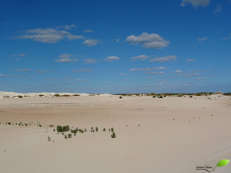 Photos d'Australie: Désert blanc western australia