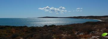 Photos d'Australie: Shark bay