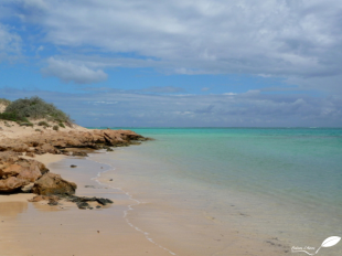 Photos d'Australie: Parc national ningaloo