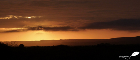 Photos d'Australie: Lever de soleil
