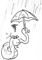 Road trip en Australie pendant l'année de la pluie ...