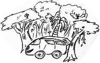 S'arrêter où on veut pendant son road trip: dans la forêt
