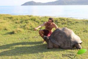 David et une tortue géante des Seychelles