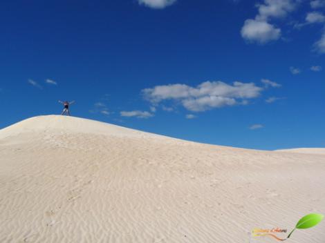 Les dunes de sable blanc