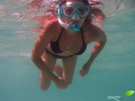 Séance snorkeling