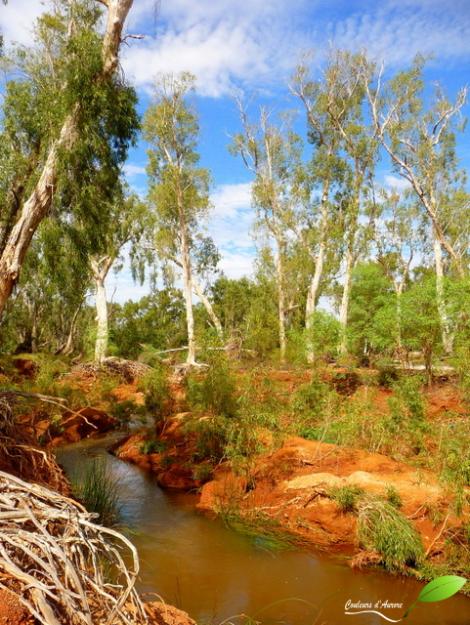 Parc national Millstream