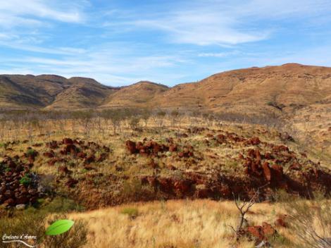 Paysage de la région Pilbara
