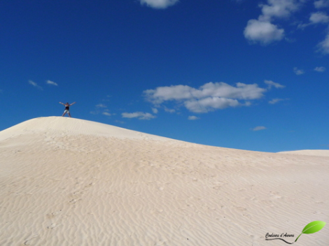 Dunes du parc national Nambung