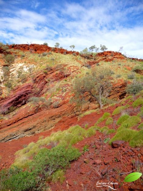 Hamesley gorge, parc national Karijini