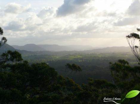 parc national de Tewantin