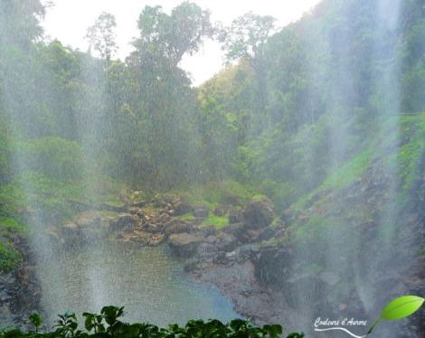 Purling brook falls circuit