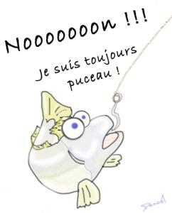 Dessin poisson pêché trop tôt sans avoir eu le temps de se reproduire