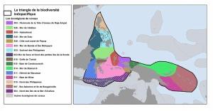 triangle de biodiversité