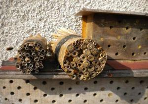 Nichoir à abeilles