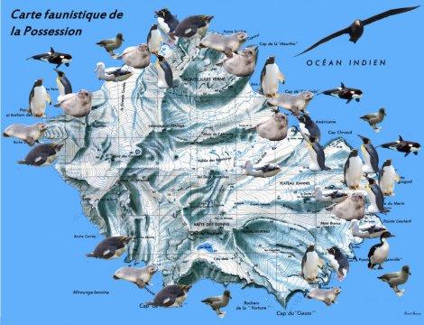 Carte de la faune de l'île de la Possession (Crozet)