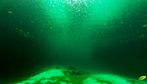 image3481