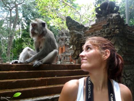 Singe de la forêt des singes (Ubud, Bali, Indonésie)