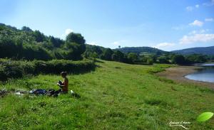 Bivouac avec bâche dans un champ