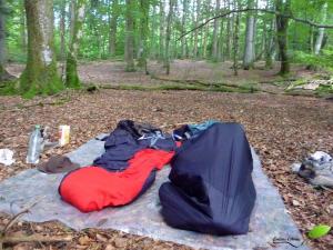 Camping sauvage en forêt avec une bâche