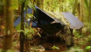 Hamac de jungle, avec moustiquaire+ bâche. Voilà comment être isolé de la pluie et des insectes.