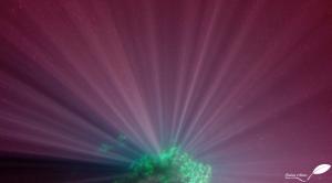 Rayons du soleil sous l'eau et filtre rouge