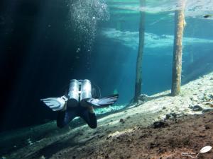 plongeur avec une bibouteille en cenote (mexique)