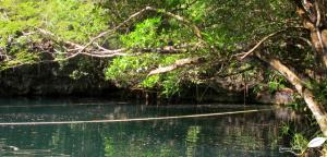 Partie ouverte du cenote Angelita