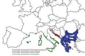 Distribution géographique de la tortue d'Hermann