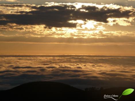 Vue au lever du soleil au sommet du Mont Canobolas, au-dessus des nuages