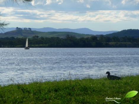 Lac de Canberra