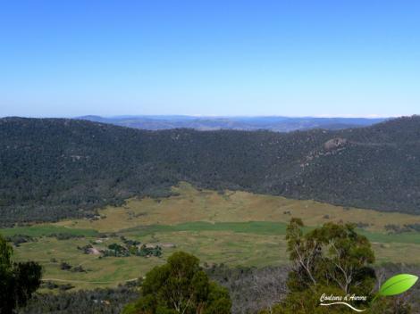 Vue sur le parc national Namadgi