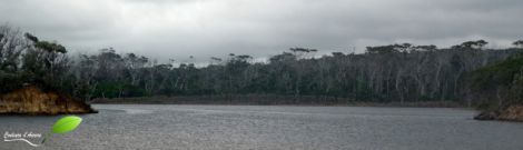 Parc national Mimosa rocks