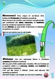 Sentier sous-marin sur herbier de posidonie: 1ère pancarte