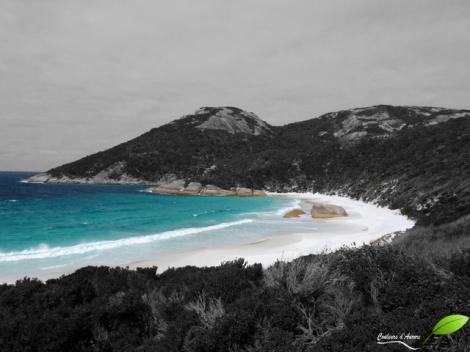Little beach, réserve naturelle Two people bay