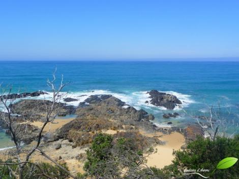 Cape Conran coastal park