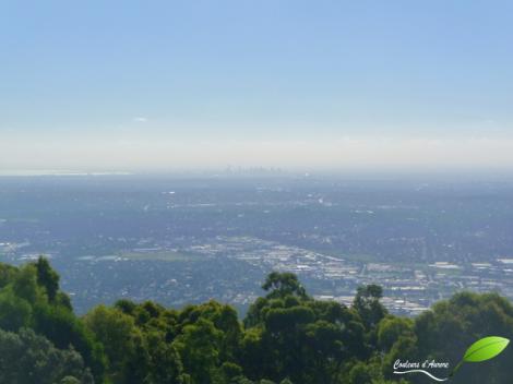 Vue sur Melbourne depuis les alentours