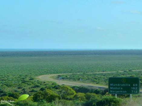 Paysage de la plaine du Nullarbor