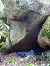 Point dodo à l'abri de la pluie sous les rochers