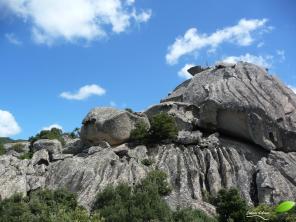 Petite séance grimpette pour mieux voir le paysage