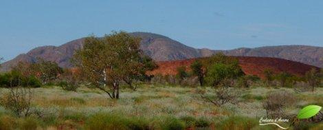 Paysage de la région Pilbara, le long de la route 136