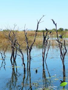 Parrys lagoons NR