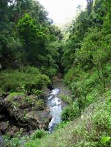 Rivière en bas de la cascade