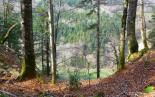 Aperçu à travers le sentier menant au Belvédère depuis le pic de l'aigle