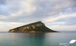 Vue sur l'île de Figarolo depuis le cap Figari au lever du soleil sous une ambiance un peu plus sèche...