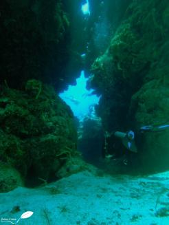 Canyon près de Cozumel