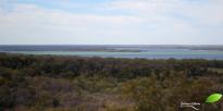 """Point de vue depuis une tour d'observation sur le lac """"Joe pool"""""""