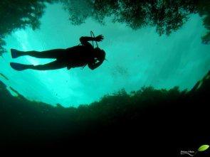 Apprentie plongeuse. Cette cenote étant peu profonde, beaucoup de club de plongée à Tulum s'en serve pour initier les plongeurs débutants.