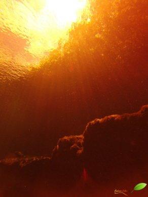 Rayons du soleil au filtre rouge