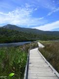 Sentier en bois sur le marais.